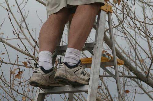 Man on a ladder