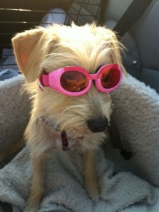 I'm so cool!