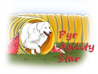 Pyr Agility Star