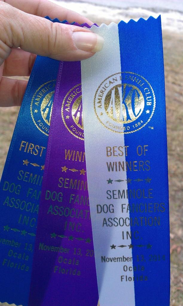 Ocala Dog Show_0262